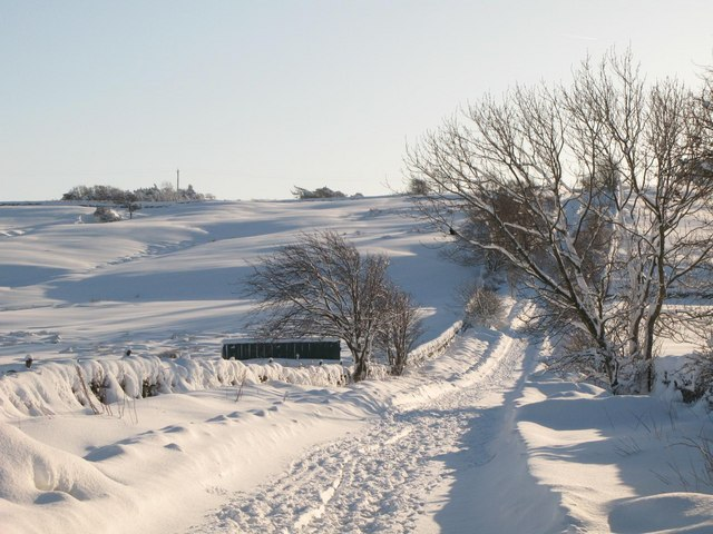 Snowy pastures above Lonkley Head