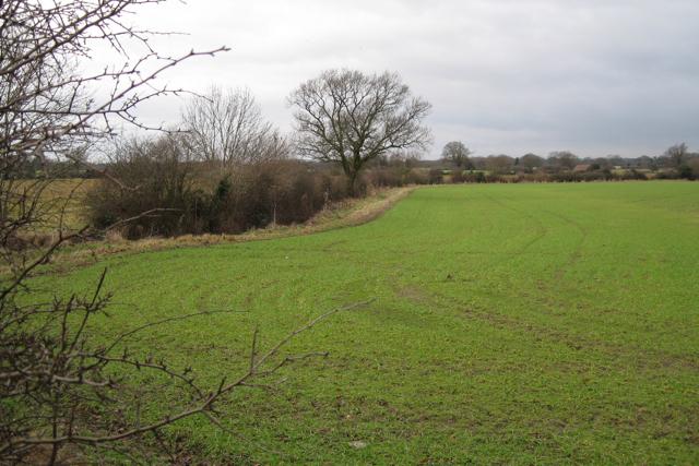 Stream near Park Farm