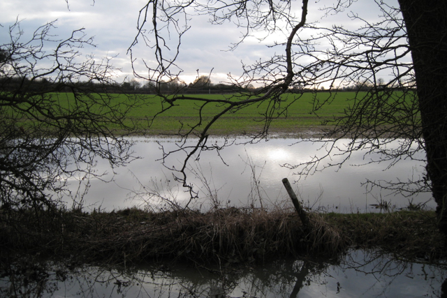 Waterlogged field near Stone House Farm