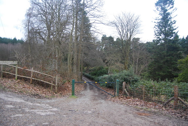 Barrier across the Bridleway, Bedgebury forest