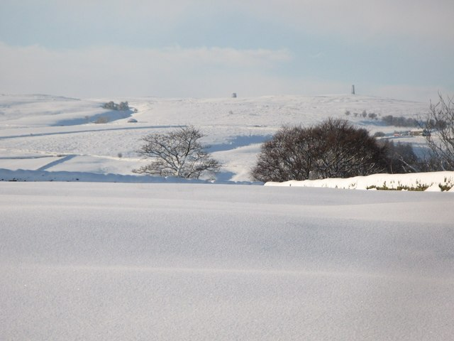 Snowy pastures near Lonkley Head