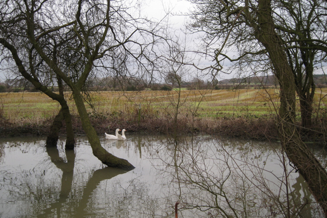 Full pond near Furzen Hill Cottages