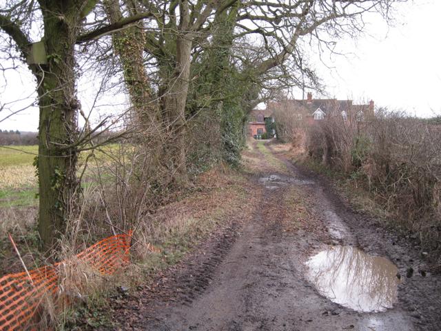 Green lane from Stareton nears Furzen Hill Cottages