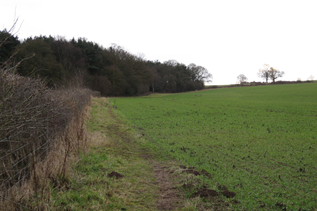 Northwest side of North Cubbington Wood