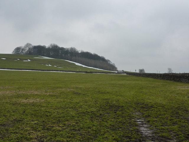 Kemp's Hill in January