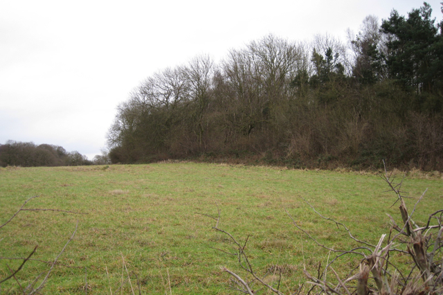 Northwest corner of North Cubbington Wood