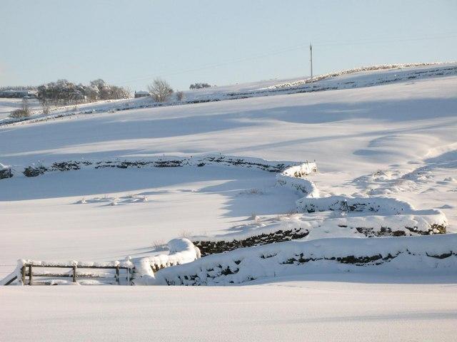 Snowy pastures above Lonkley Head (4)