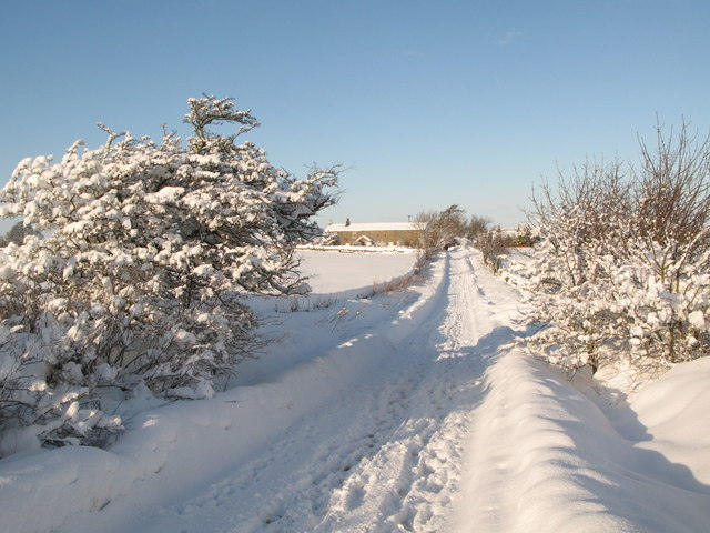 Lonkley Head in the snow (3)