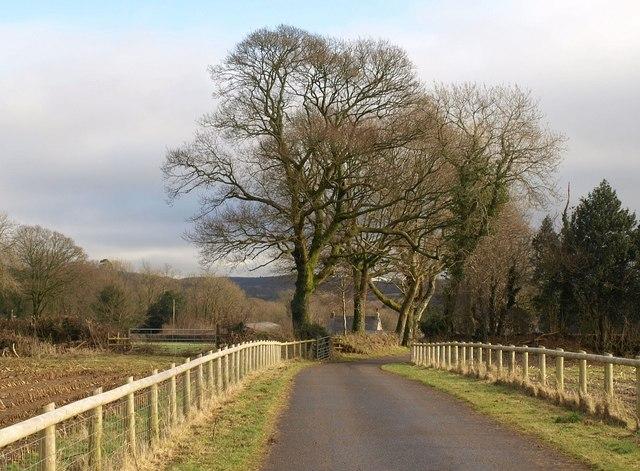 Approaching Burnworthy Farm