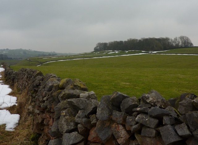 Copse, fields and dry stone wall