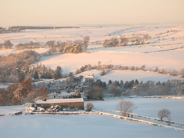 Morning light on snowy pastures above Lonkley Head