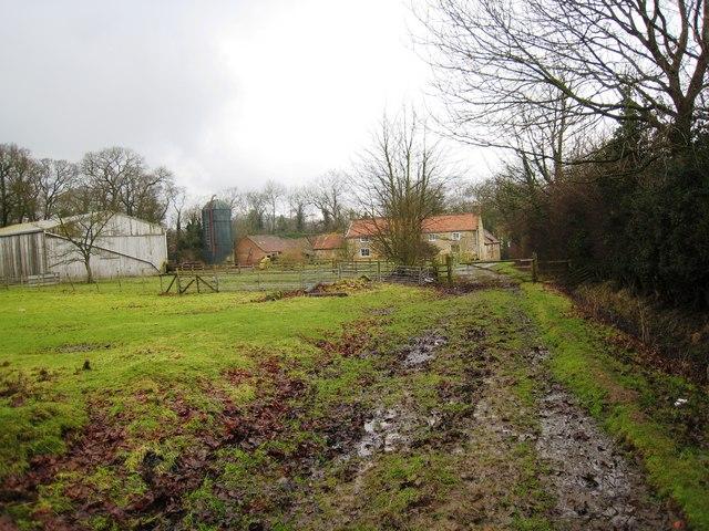 Muddy track near Busby Hall