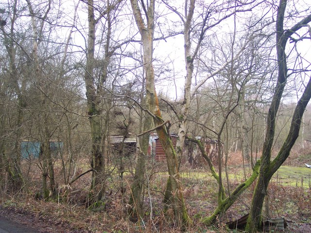 Ruined Sheds in Hoad's Wood