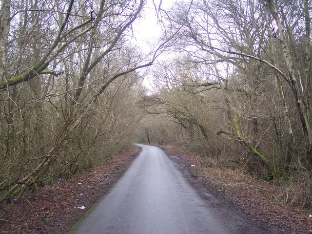 Etchden Road in Hoad's Wood