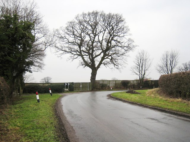 Road approaching Great Busby