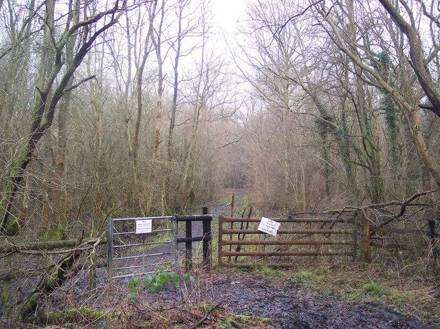 TROT Bridleway in Hoad's Wood