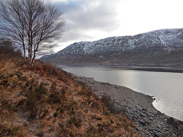North shore of Loch Cluanie