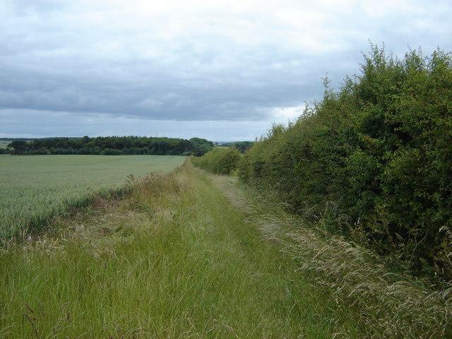 Fieldside  Footpath