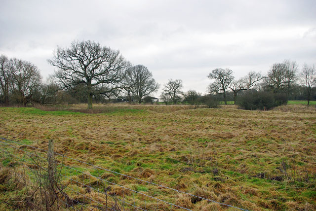 Moat near Lodge Farm
