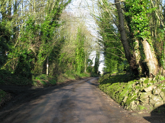 View along The Street, Lympne