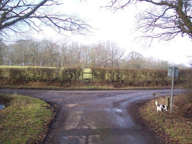 Junction on Wissenden Lane