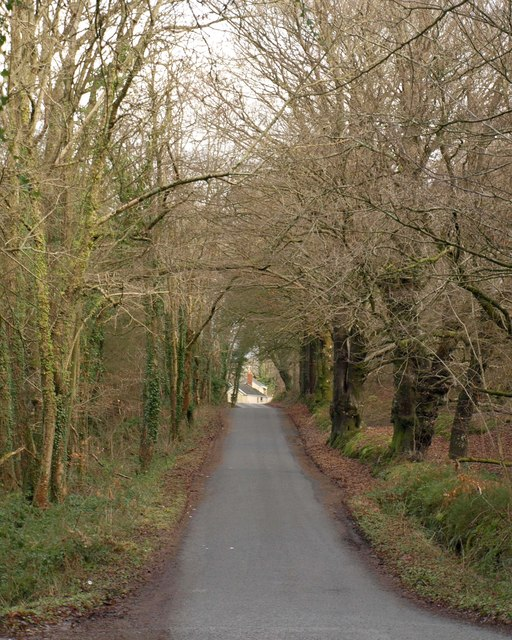 Road to Blagdon Hill