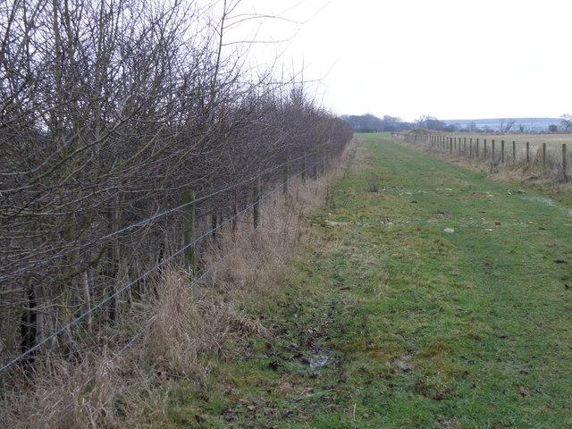 Bridleway towards Bulwick
