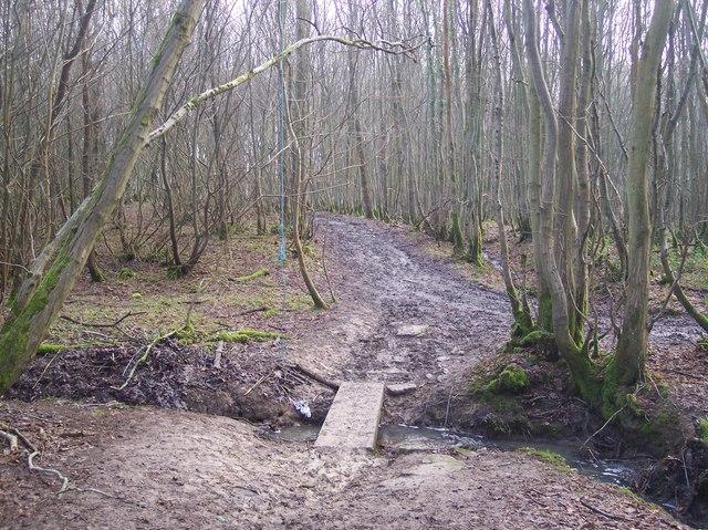 Footbridge in Lamberden Wood
