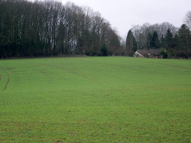Footpath, West Dean