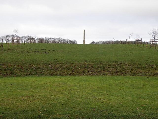 Distant obelisk at Deene