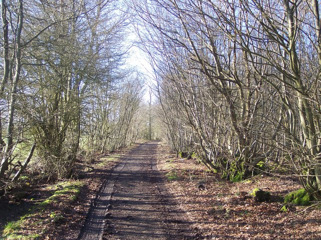 Gadsby Lane byway to Further Quarter