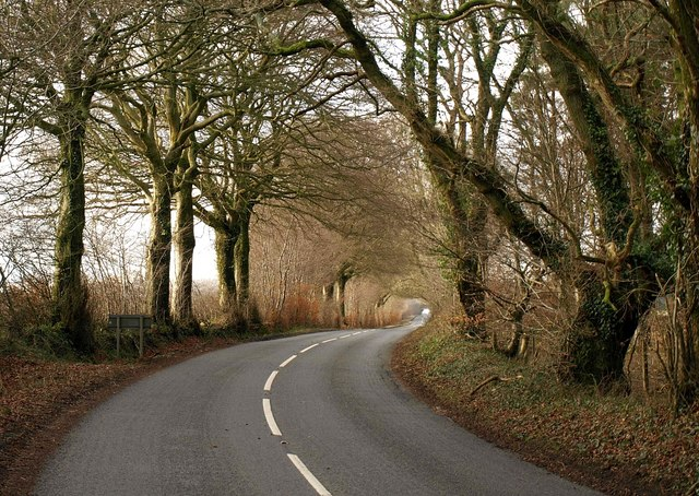 Road on Blackdown Hills