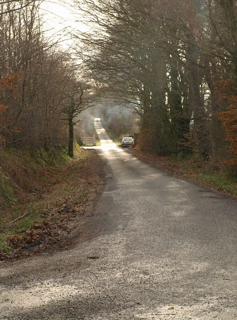 Lane on Blackdown Hills