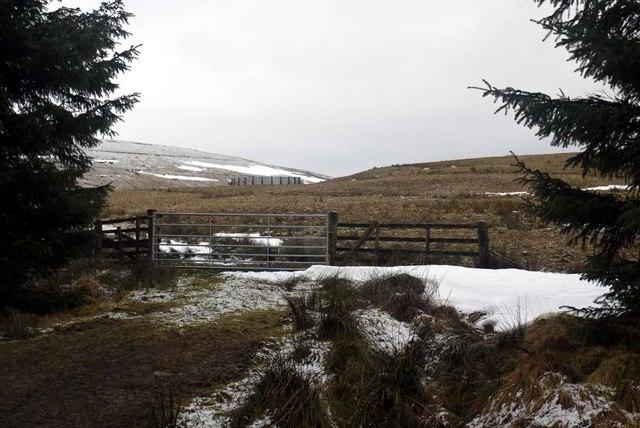 Gate onto Well Hill