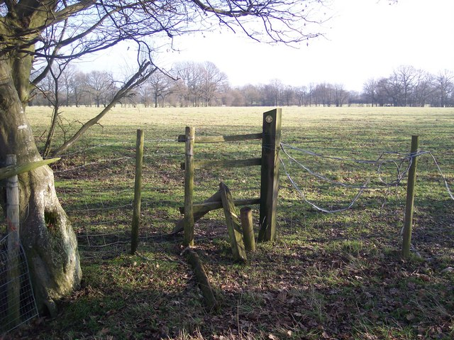 Broken Stile in the middle of nowhere