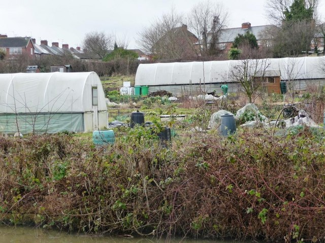 Allotments lying between the Erewash and disused Derby canals