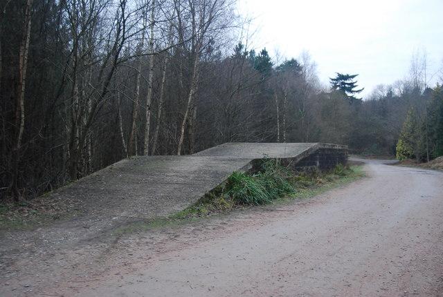 Loading ramp, Bedgebury Forest