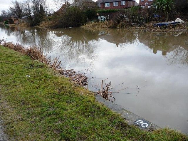 Angler's spot no. 20, Erewash Canal, Sandiacre