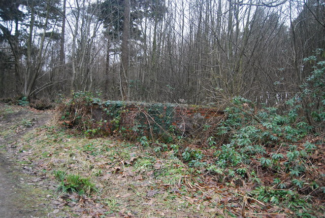 Pillbox by the forest track, Bedgebury Forest