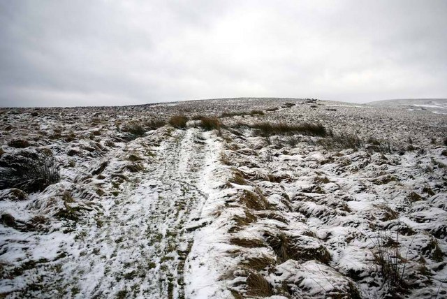 The Southern Upland Way at Lowmill Knowe