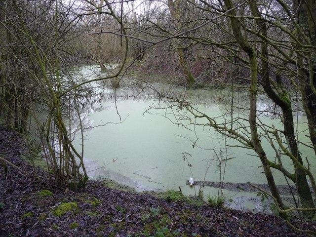 Oxbow lake [1]