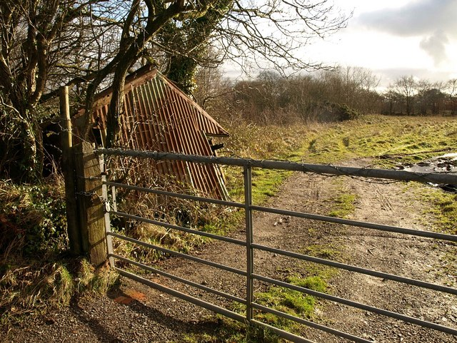 Collapsed shed, Leigh Hill