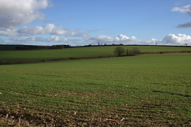 Fields near Wastor