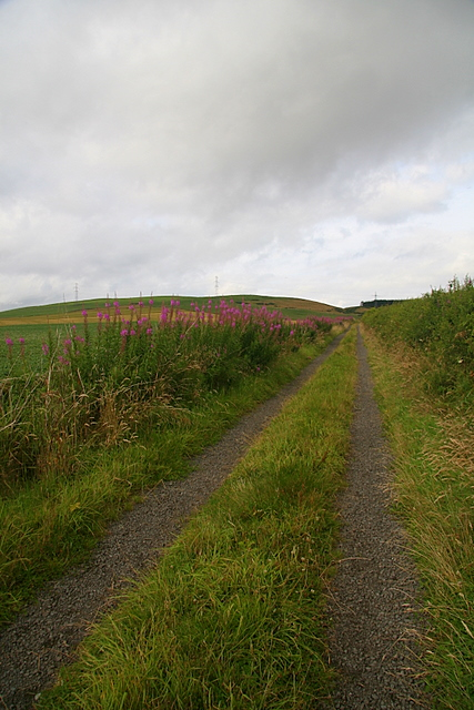 Track to Finlarg Hill