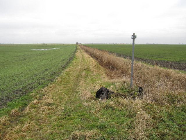 Footpath to Doddington