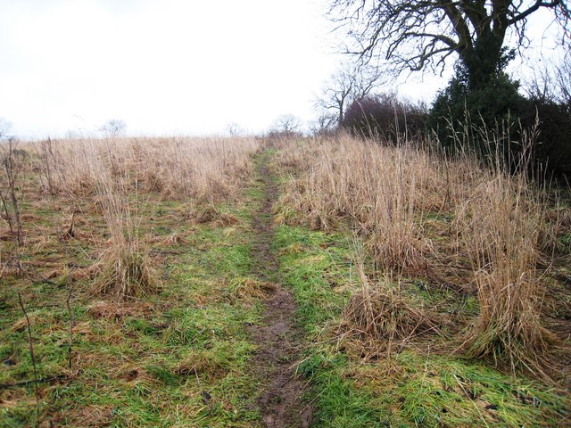 Path to Meynell Hall