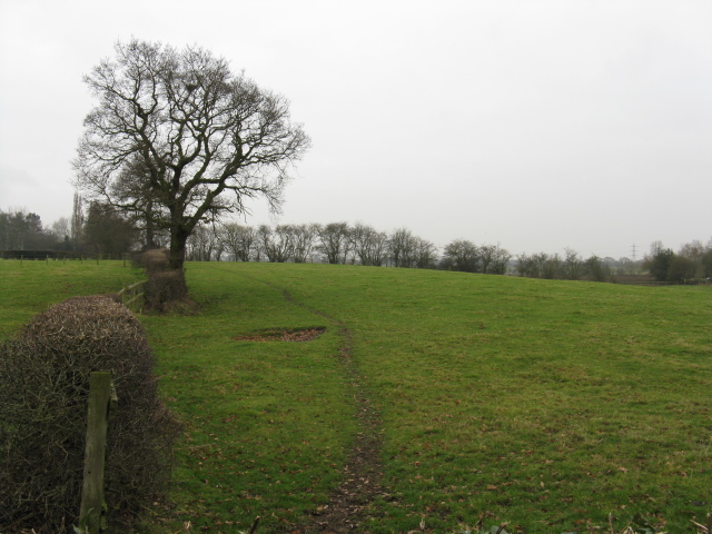 Field Near Elton Hall