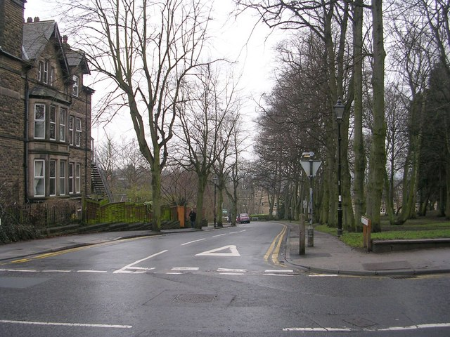 Coppice Drive - Kings Rd