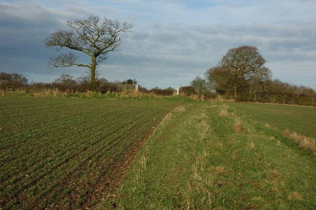 Bridleway near Inkberrow