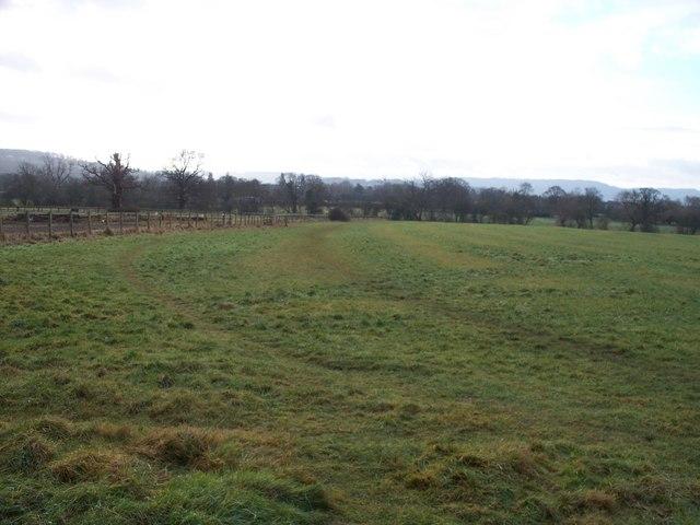 Footpath to Presbury